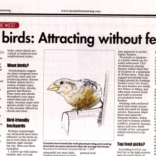 Series of articles investigating the science behind best practices for attracting backyard wild birds