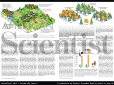 "Illustrations commissioned by ""American Scientist"" magazine"
