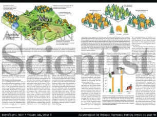 """Illustrations commissioned by """"American Scientist"""" magazine"""