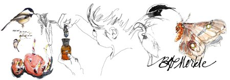 Collage_BGM illustrations (07.03.2014)_horizontal_no text