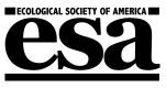 ESA Logo Mono 1002525 (2)