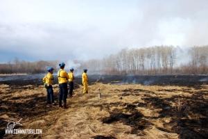 Prescribed burning to increase bison habitat (Saskatchewan)