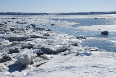 Spring ice break-up on the Saint Lawrence River (Quebec)
