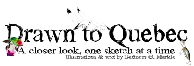 Drawn to Quebec banner (07.2014)_v6