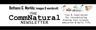 CommNatural Newsletter Header (2014)