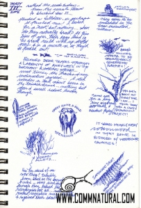 Dupuyer Creek sketchbook page_wm