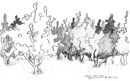 Western Montana sketch
