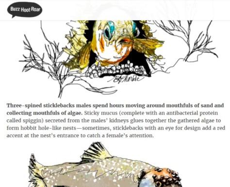 fish-nests_screenshot-2