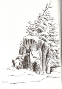 Winter spruce stump & sapling sketched in northwestern Montana many years ago