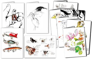 """Some of the many illustrations featured in my illustrated greeting card line """"Drawn to the West"""""""