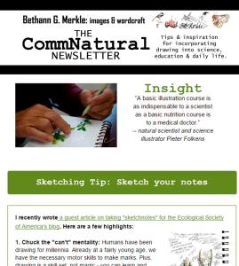 August newsletter_insight_screenshot