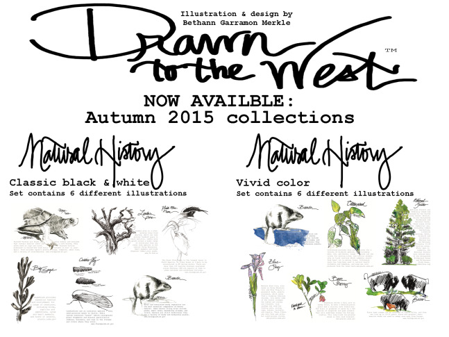 Drawn to the West_autumn 2015 collection