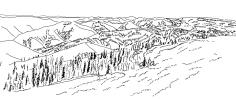 Pine ecosystem_GB south hills (08.2015)_v1