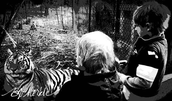 20150323_Tiger at Billings zoo_poster_bw_rs