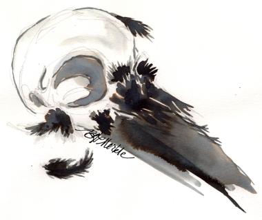 20160831_Raven skull_quink_rs.jpg