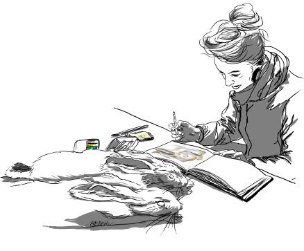 20161029_bgm-drawing-hare-specimens_v1_rs