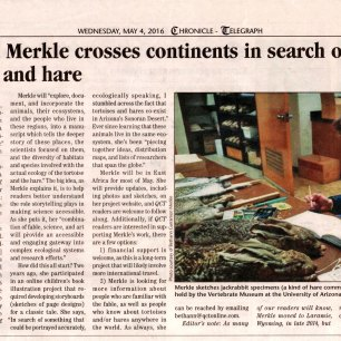 "Media coverage of my on-going project ""The Ecologically True Story of the Tortoise and the Hare"""