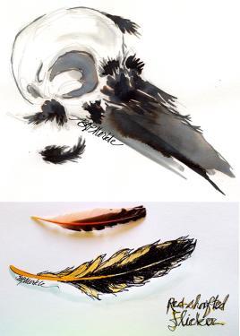 skull-feather
