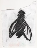 20170409_graphite fly