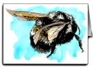 Bumble bee_blue_icons