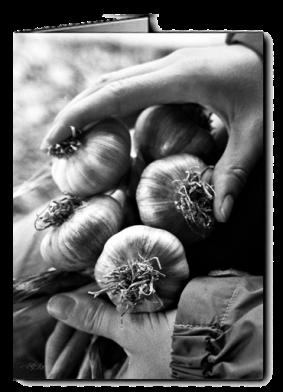 bw_Ivy_hand_garlic_card icon