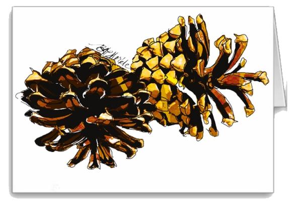 Pine cone_card icon