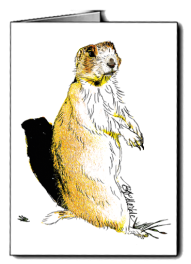 Prarie dog_card icon