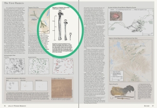 """Illustration for this spread in """"Wild Migrations: An Atlas of Wyoming's Ungulates"""""""